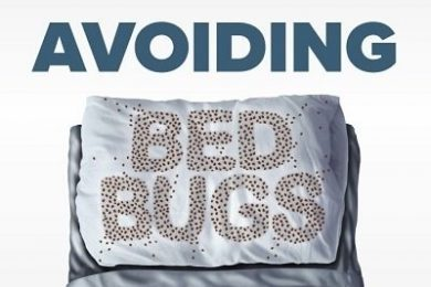avoid-bed-bugs
