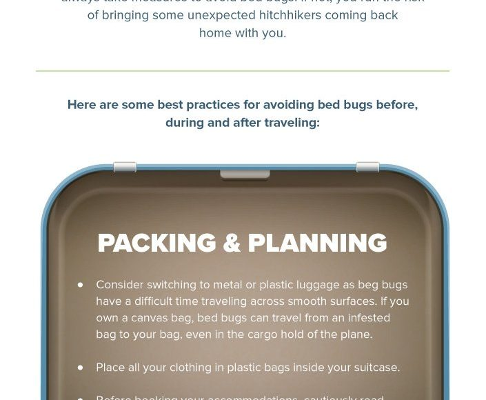 Infographic: Bed Bug Prevention During Holiday Travel