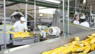 food-processing-img